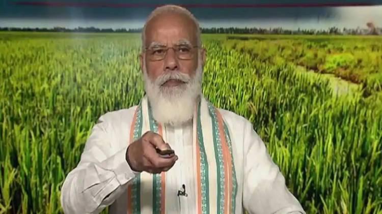 World Food Day: New farm laws will boost farmers' income, assures PM Narendra Modi